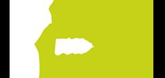 BOAA Logo